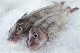 Haddock Fish from a Flying Fish at Home box